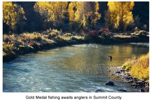 Gold Medal fishing awaits anglers on the Blue River.