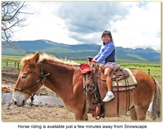 Horse riding is available just a few minutes away from Snowscape.